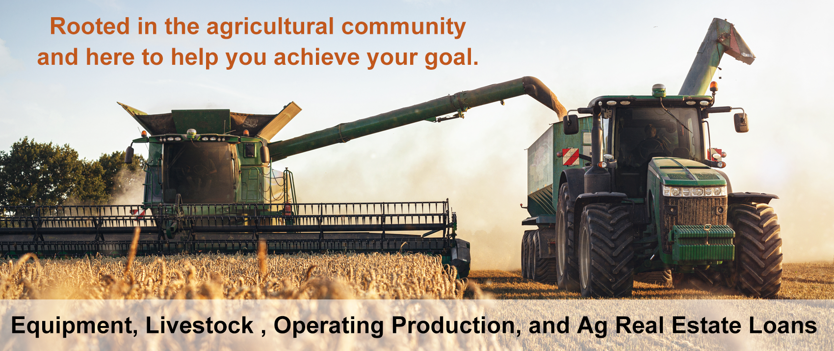 Equipment, Livestock , Operating Production, and Ag Real Estate Loans